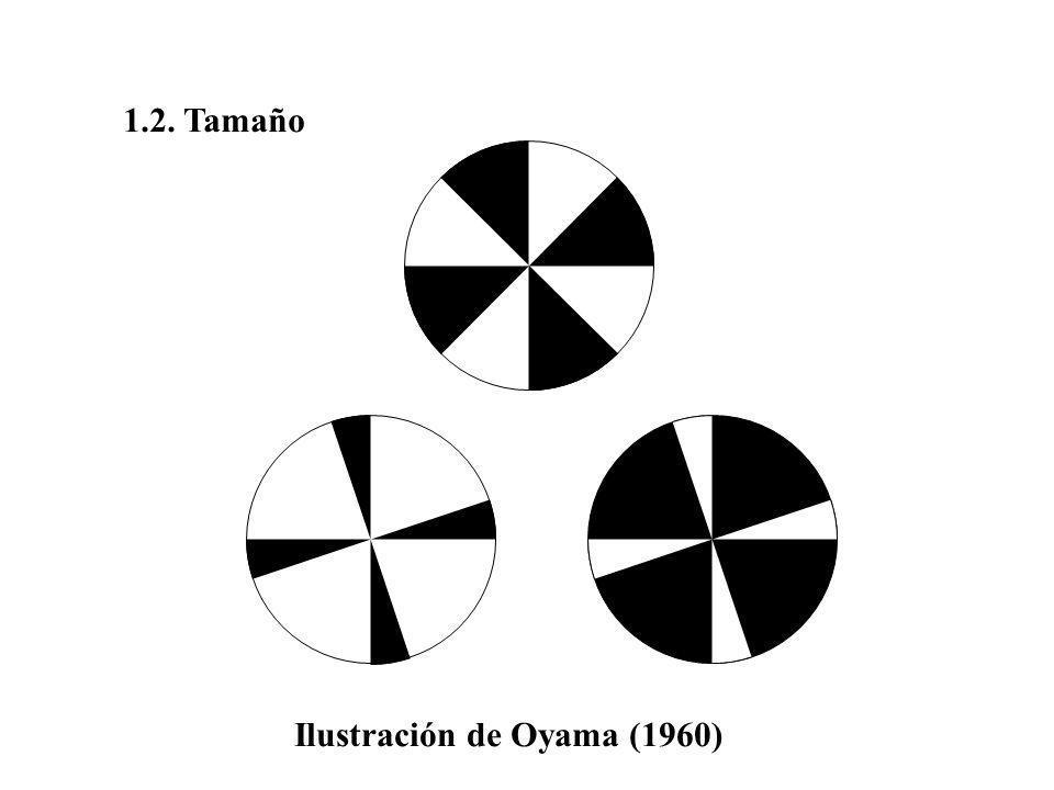 Ilusión vertical-horizontal (Wund, 1858)