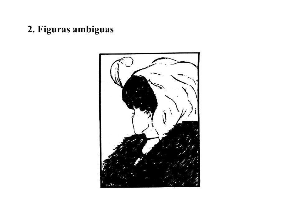 2. Figuras ambiguas