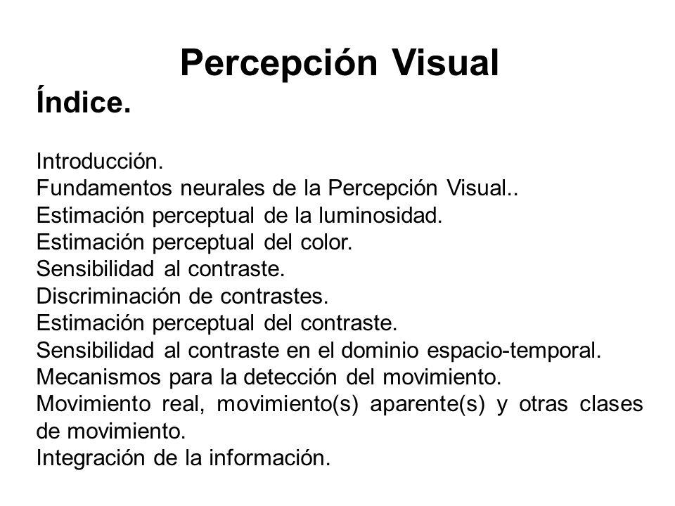 Percepción Visual Índice.Introducción. Fundamentos neurales de la Percepción Visual..