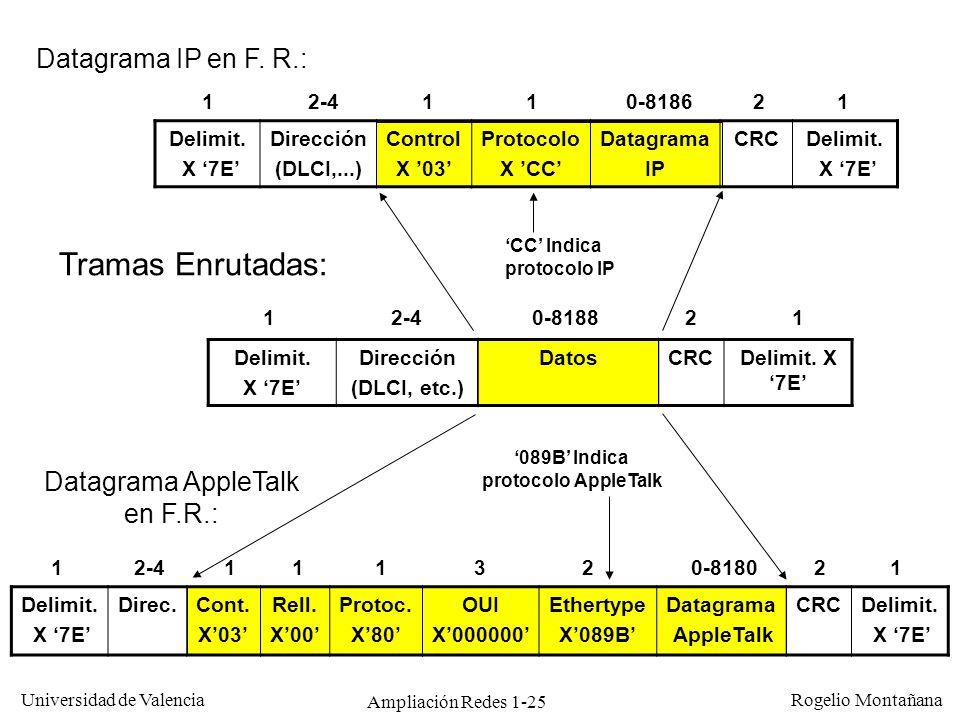 Ampliación Redes 1-25 Universidad de Valencia Rogelio Montañana Delimit. X 7E Direc.Cont. X03 Rell. X00 Protoc. X80 OUI X000000 Ethertype X089B Datagr