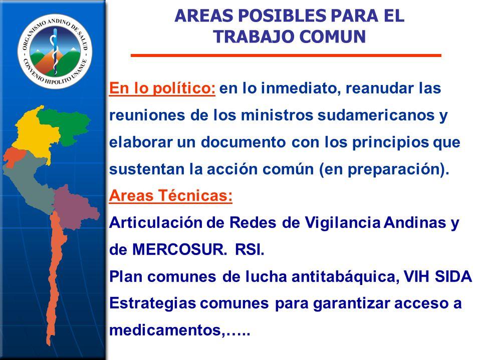 AREAS POSIBLES PARA EL TRABAJO COMUN En lo político: en lo inmediato, reanudar las reuniones de los ministros sudamericanos y elaborar un documento con los principios que sustentan la acción común (en preparación).