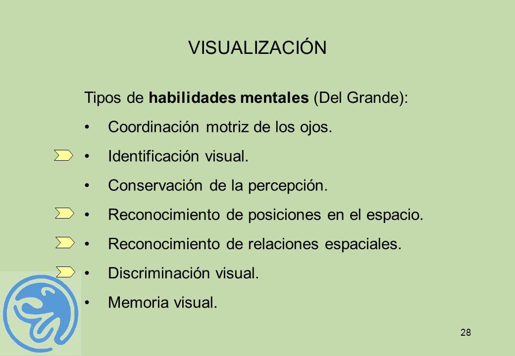 28 VISUALIZACIÓN Tipos de habilidades mentales (Del Grande): Coordinación motriz de los ojos. Identificación visual. Conservación de la percepción. Re