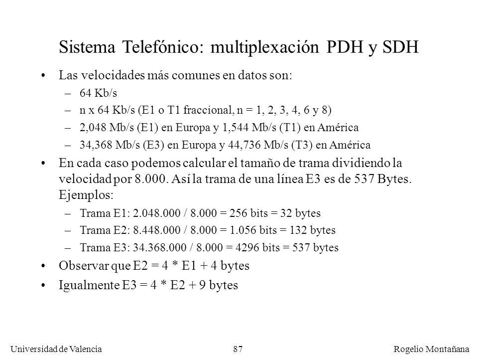 86 Universidad de Valencia Rogelio Montañana NivelCanalesNombreNorteaméricaJapónResto Mundo 01E00,064 124T1 o DS11,544 130E12,048 296T2 o DS26,312 (4x