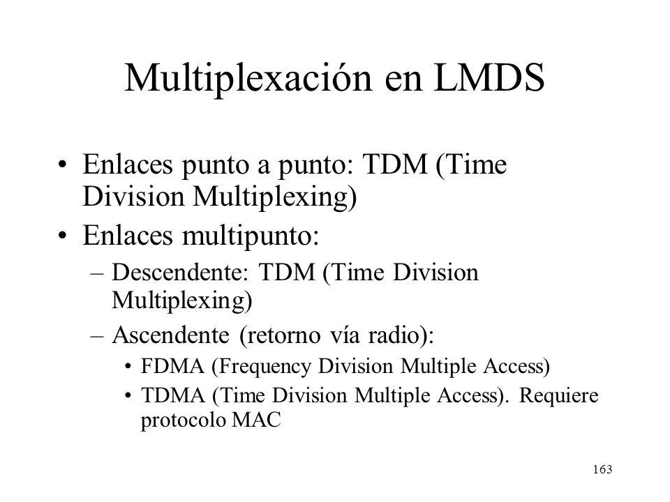 162 Arquitectura de un sistema LMDS NIU Red telefónica Unidad de provisión de vídeo DCU: Digital Connection Unit Internet BSU: Base Station Unit NOC: