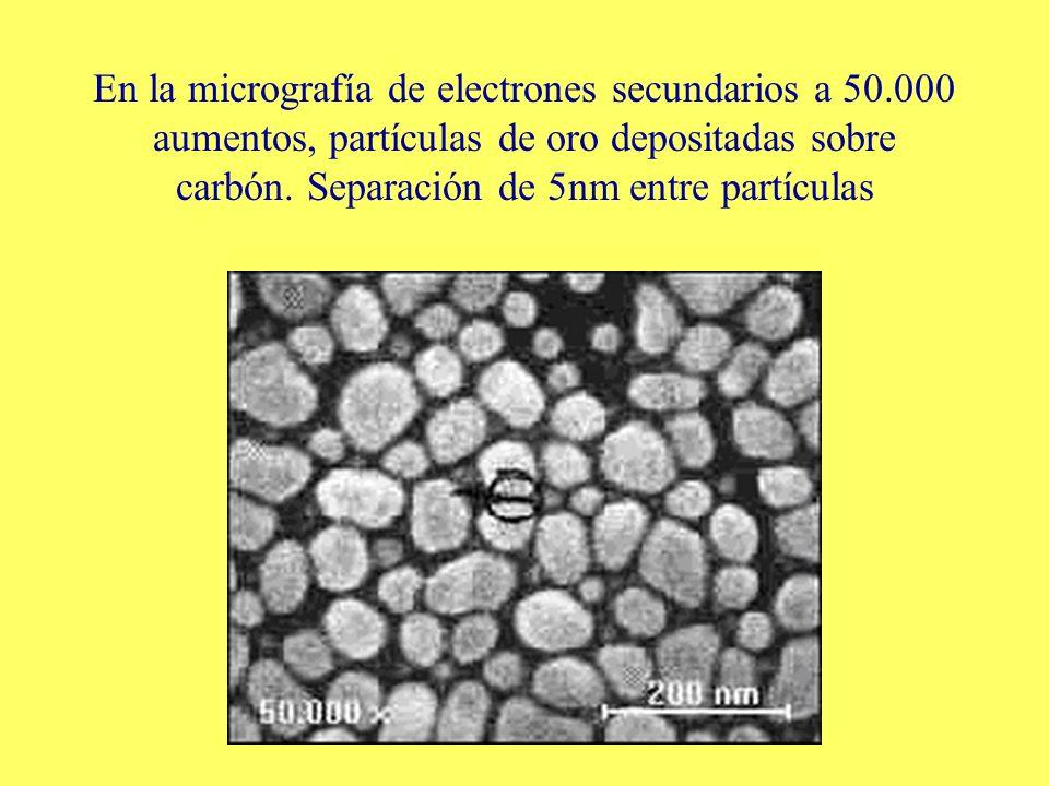 En la micrografía de electrones secundarios a 50.000 aumentos, partículas de oro depositadas sobre carbón. Separación de 5nm entre partículas