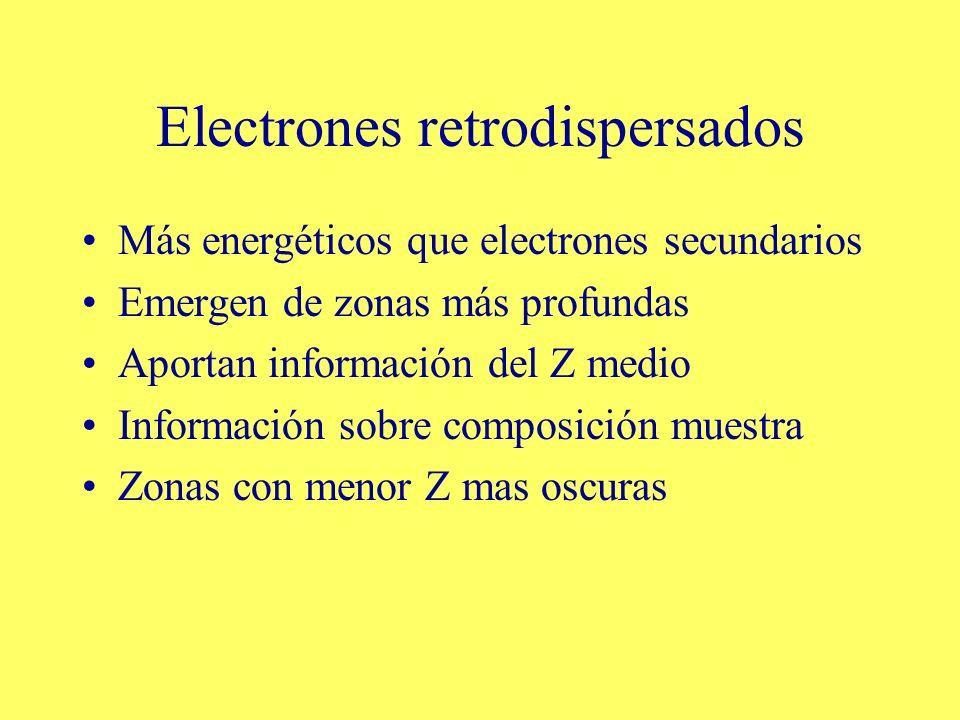 Electrones retrodispersados Más energéticos que electrones secundarios Emergen de zonas más profundas Aportan información del Z medio Información sobr