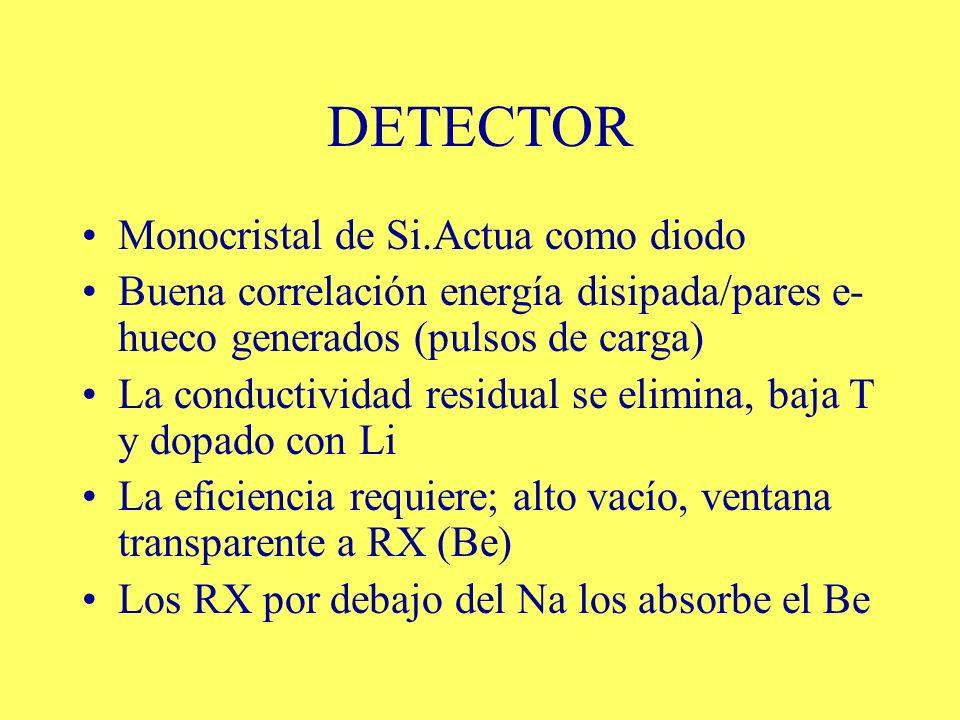 DETECTOR Monocristal de Si.Actua como diodo Buena correlación energía disipada/pares e- hueco generados (pulsos de carga) La conductividad residual se