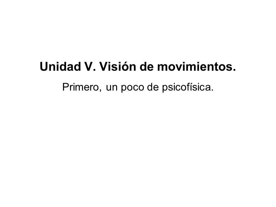 (x 1,t 1 ) (x 2,t 2 ) Análisis del movimiento en el sistema visual.