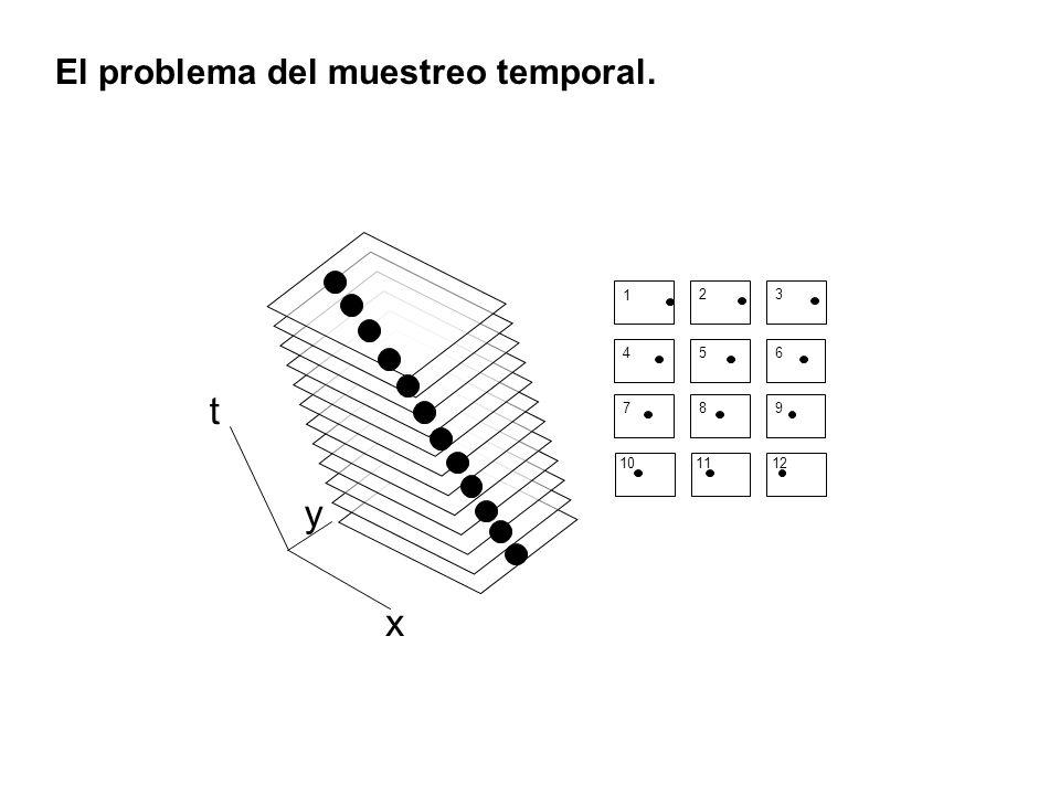x y t 1 23 456 789 101112 El problema del muestreo temporal.