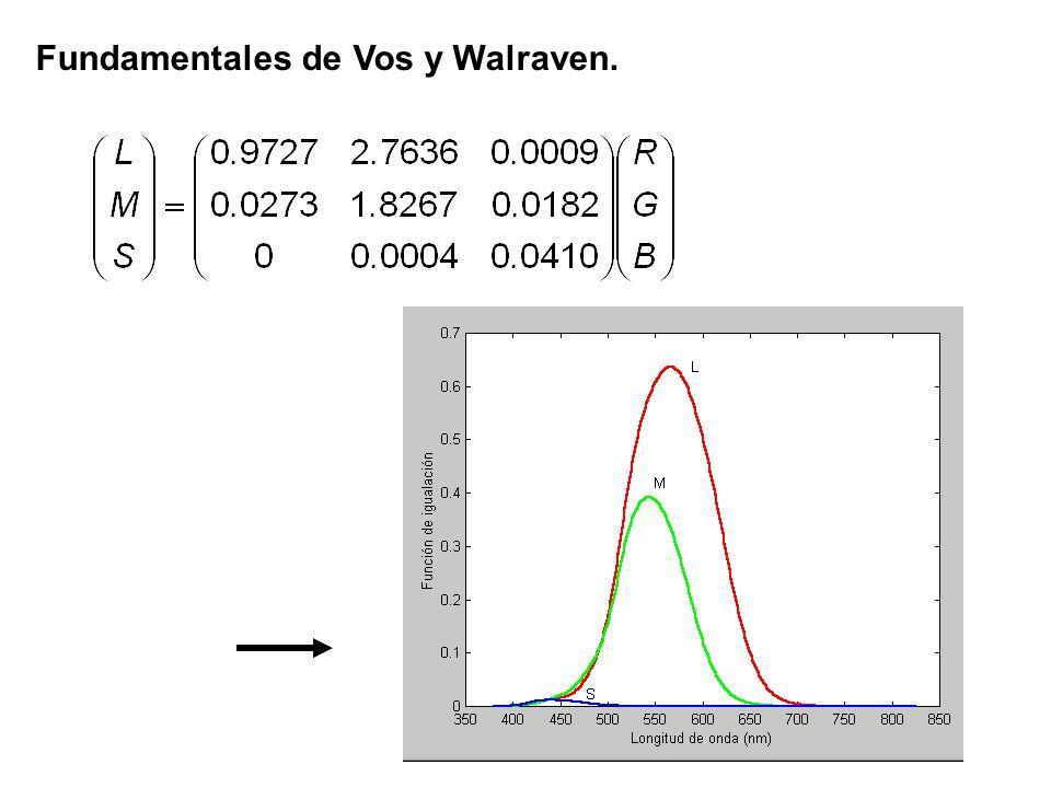 Fundamentales de Vos y Walraven.