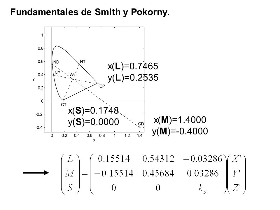 Fundamentales de Smith y Pokorny. x(L)=0.7465 y(L)=0.2535 x(M)=1.4000 y(M)=-0.4000 x(S)=0.1748 y(S)=0.0000