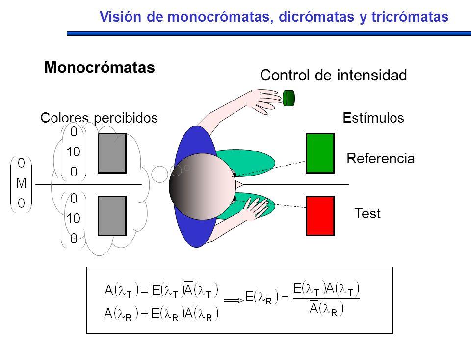 Estímulos Referencia Test Colores percibidos Control de intensidad Visión de monocrómatas, dicrómatas y tricrómatas Monocrómatas