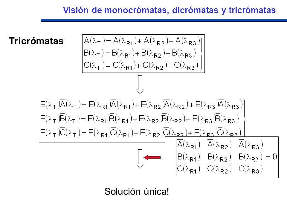 Solución única! Visión de monocrómatas, dicrómatas y tricrómatas Tricrómatas