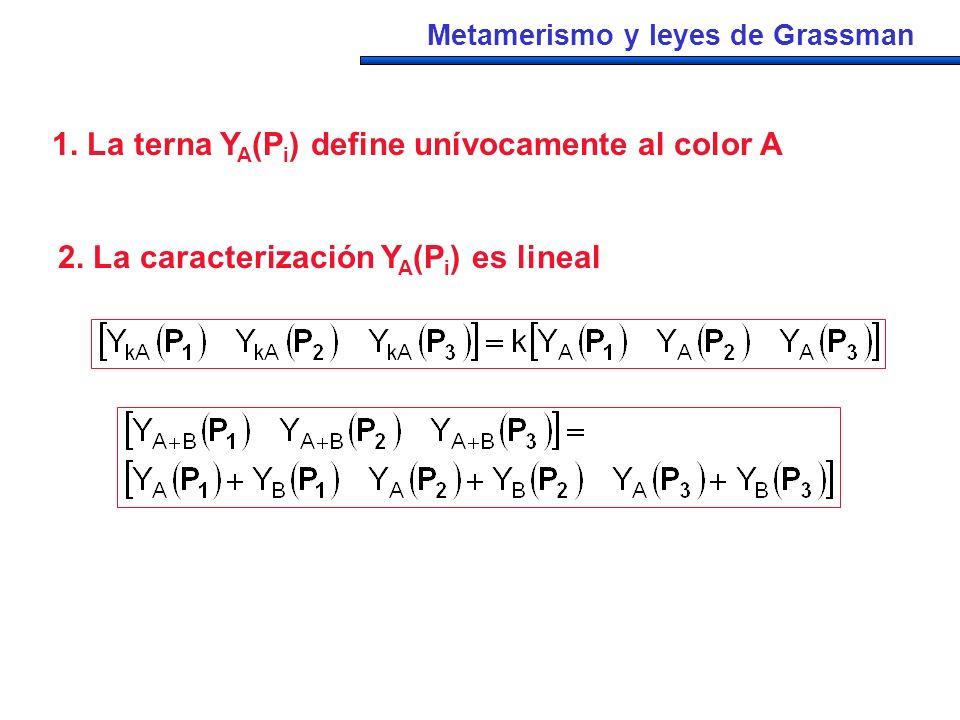 1. La terna Y A (P i ) define unívocamente al color A 2. La caracterización Y A (P i ) es lineal Metamerismo y leyes de Grassman