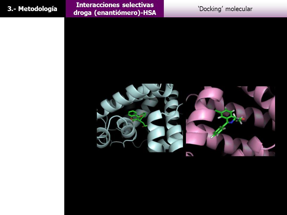 3.- Metodología Interacciones selectivas droga (enantiómero)-HSA Docking molecular