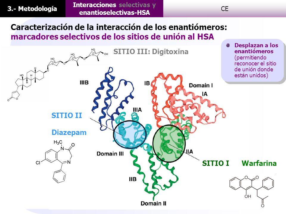 3.- Metodología Interacciones selectivas y enantioselectivas-HSA CE I SITIO II Diazepam SITIO III: Digitoxina WarfarinaSITIO I Caracterización de la i
