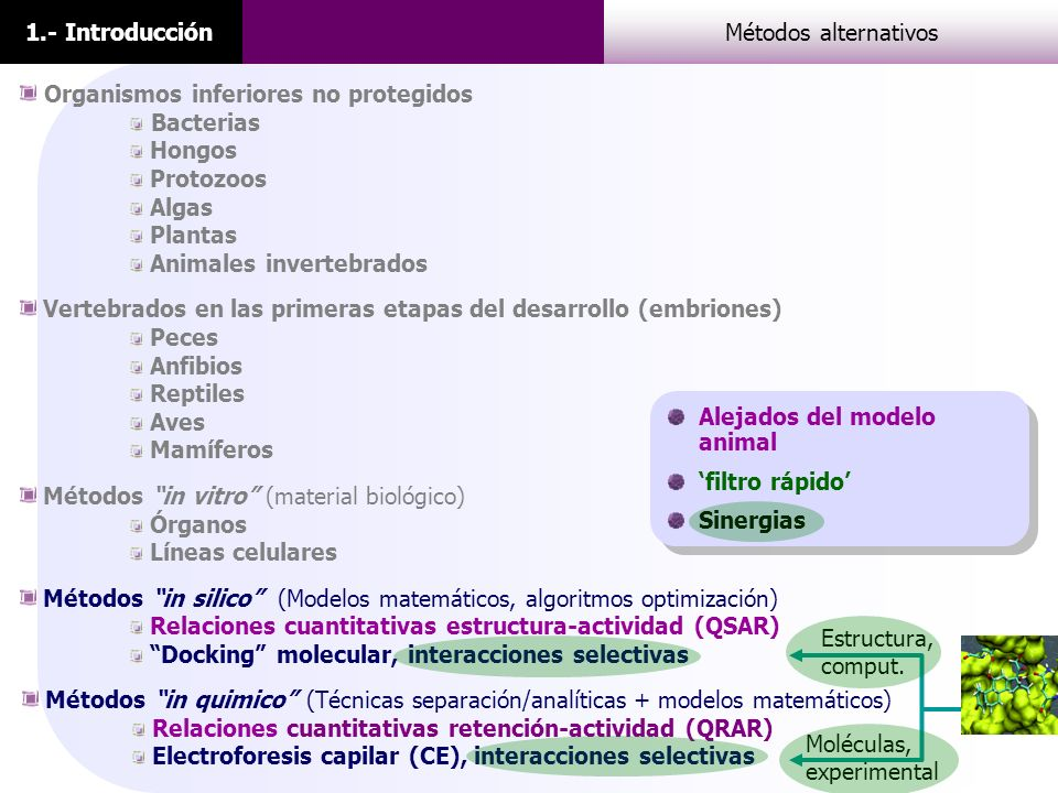 1.- IntroducciónMétodos alternativos Organismos inferiores no protegidos Bacterias Hongos Protozoos Algas Plantas Animales invertebrados Vertebrados e