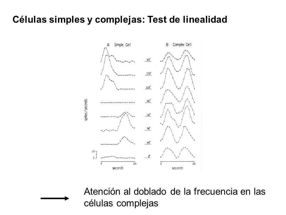 Células simples y complejas: Test de linealidad Atención al doblado de la frecuencia en las células complejas