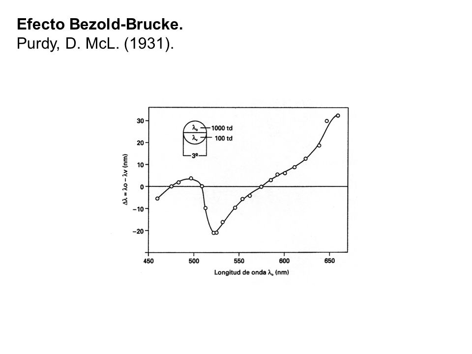 Efecto Bezold-Brucke. Purdy, D. McL. (1931).