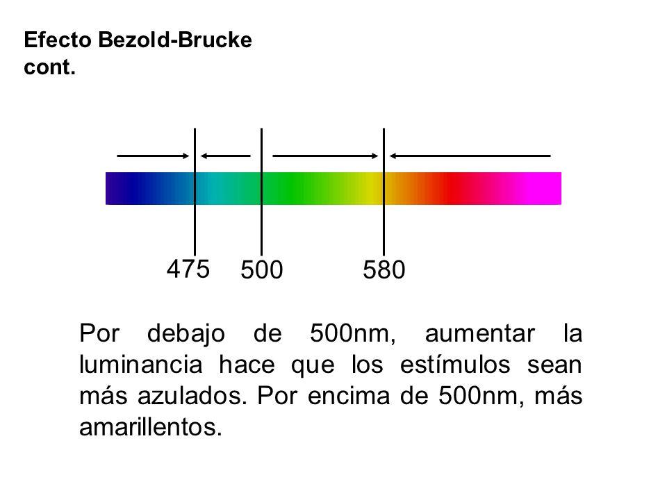 Por debajo de 500nm, aumentar la luminancia hace que los estímulos sean más azulados. Por encima de 500nm, más amarillentos. 475 500580 Efecto Bezold-
