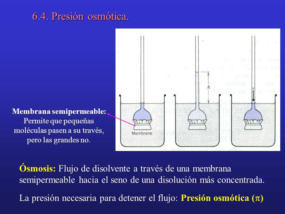 6.4. Presión osmótica. Membrana semipermeable: Permite que pequeñas moléculas pasen a su través, pero las grandes no. Ósmosis: Flujo de disolvente a t