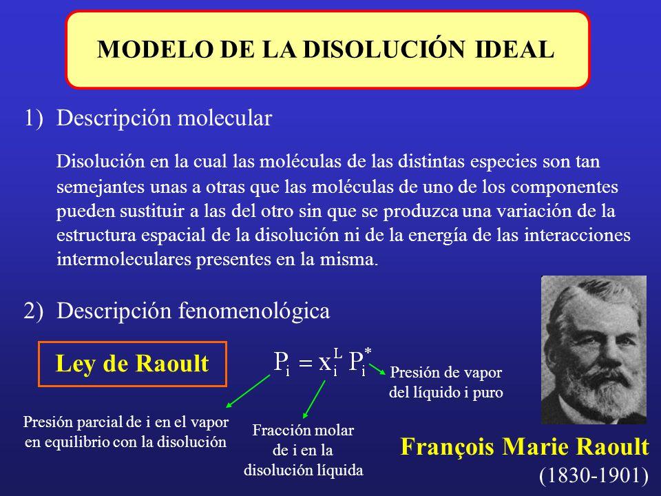 MODELO DE LA DISOLUCIÓN IDEAL 1)Descripción molecular Disolución en la cual las moléculas de las distintas especies son tan semejantes unas a otras qu