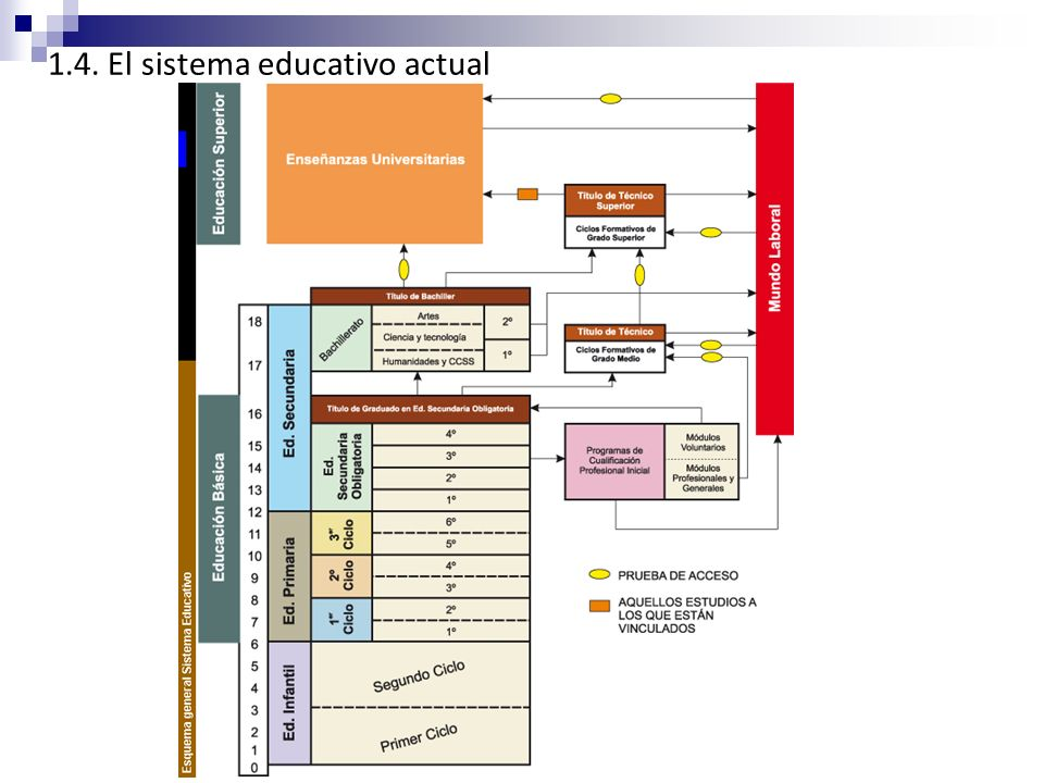 1.4. El sistema educativo actual