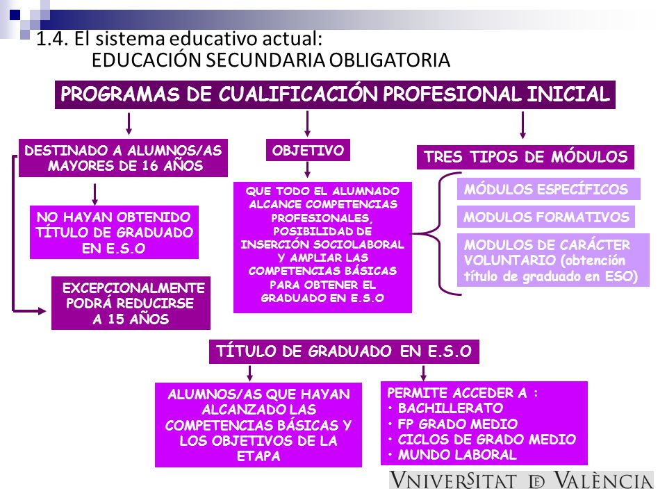 1.4. El sistema educativo actual: EDUCACIÓN SECUNDARIA OBLIGATORIA PROGRAMAS DE CUALIFICACIÓN PROFESIONAL INICIAL DESTINADO A ALUMNOS/AS MAYORES DE 16