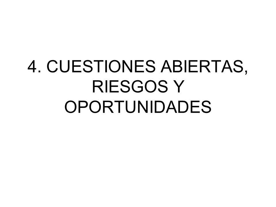 4. CUESTIONES ABIERTAS, RIESGOS Y OPORTUNIDADES