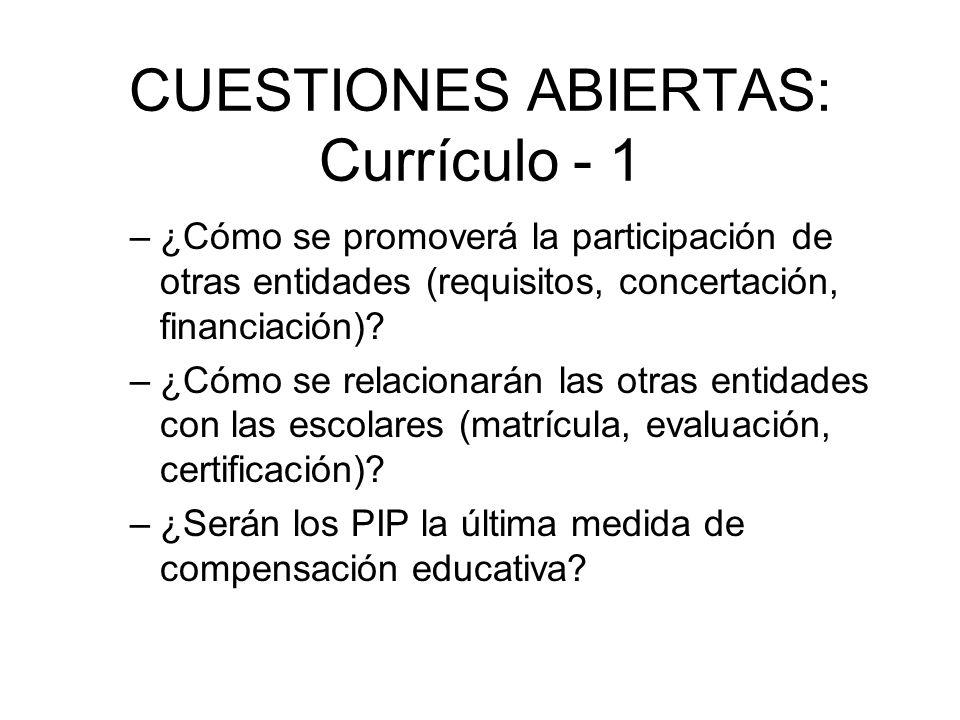 CUESTIONES ABIERTAS: Currículo - 1 –¿Cómo se promoverá la participación de otras entidades (requisitos, concertación, financiación)? –¿Cómo se relacio