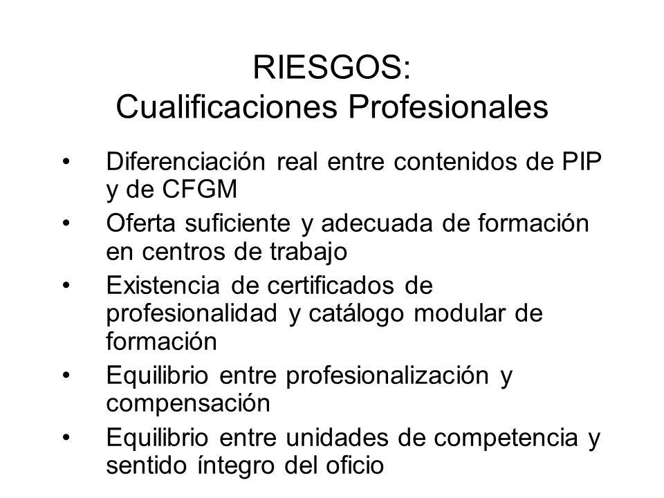RIESGOS: Cualificaciones Profesionales Diferenciación real entre contenidos de PIP y de CFGM Oferta suficiente y adecuada de formación en centros de t