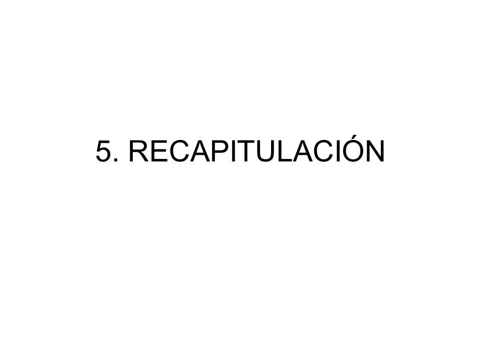 5. RECAPITULACIÓN