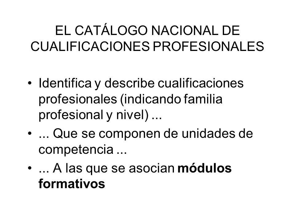 EL CATÁLOGO NACIONAL DE CUALIFICACIONES PROFESIONALES Identifica y describe cualificaciones profesionales (indicando familia profesional y nivel).....