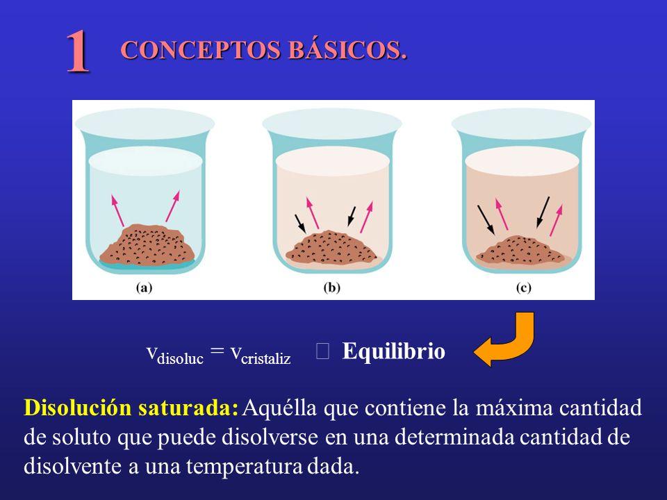 CONCEPTOS BÁSICOS. 1 v disoluc = v cristaliz Equilibrio Disolución saturada: Aquélla que contiene la máxima cantidad de soluto que puede disolverse en