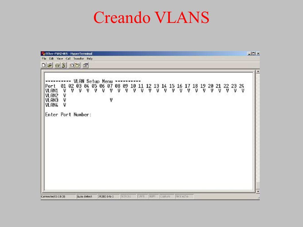 Creando VLANS