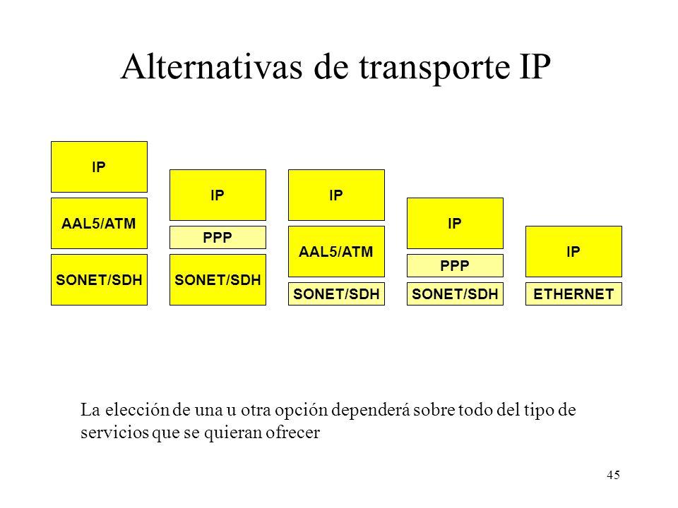 45 Alternativas de transporte IP La elección de una u otra opción dependerá sobre todo del tipo de servicios que se quieran ofrecer SONET/SDH IP AAL5/ATM IP PPP IP AAL5/ATM IP PPP SONET/SDH IP ETHERNETSONET/SDH
