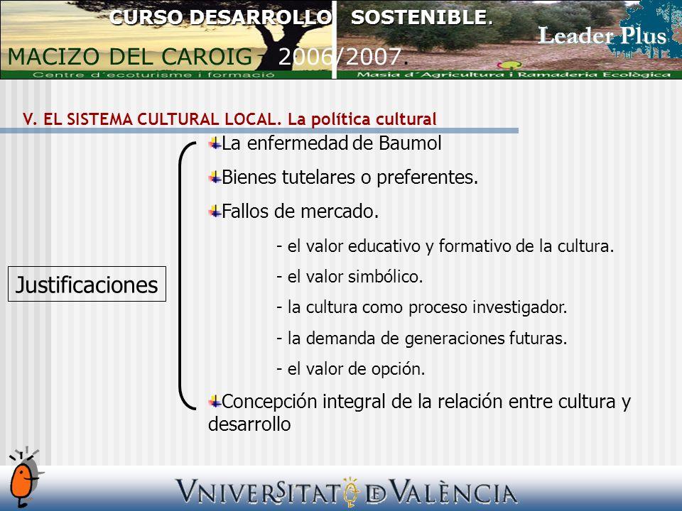 V. EL SISTEMA CULTURAL LOCAL. La política cultural CURSO DESARROLLO SOSTENIBLE.