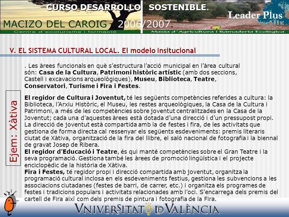 V. EL SISTEMA CULTURAL LOCAL. El modelo Insitucional CURSO DESARROLLO SOSTENIBLE.