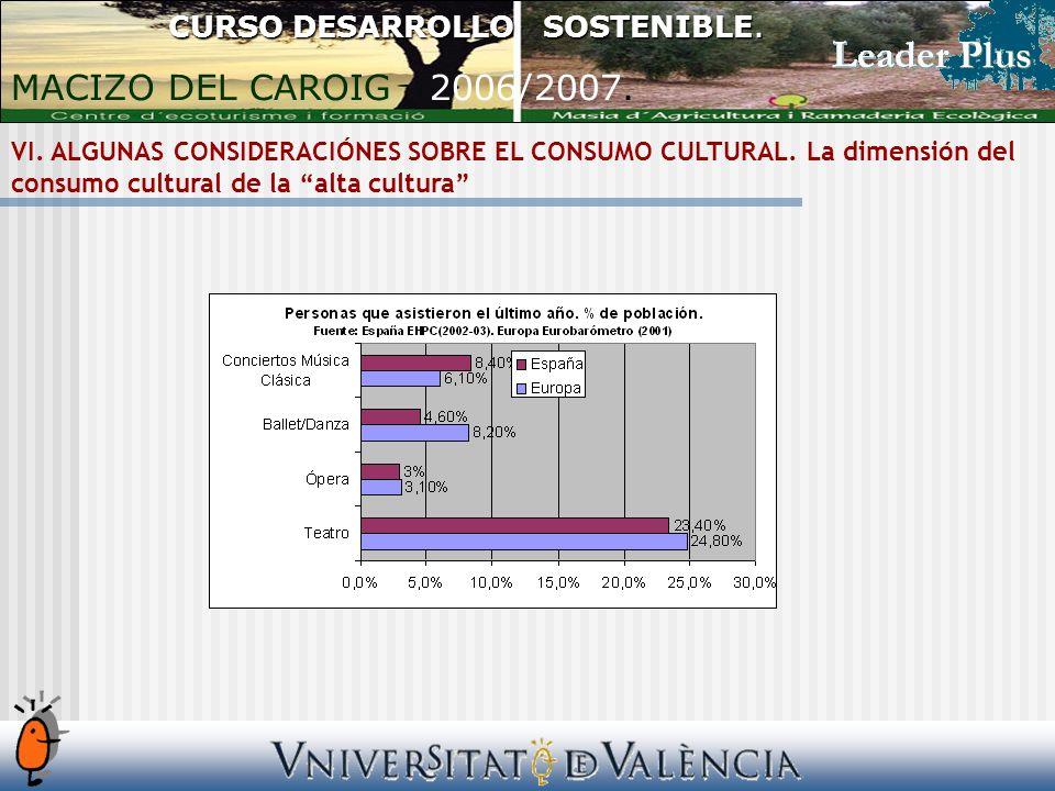 VI. ALGUNAS CONSIDERACIÓNES SOBRE EL CONSUMO CULTURAL.