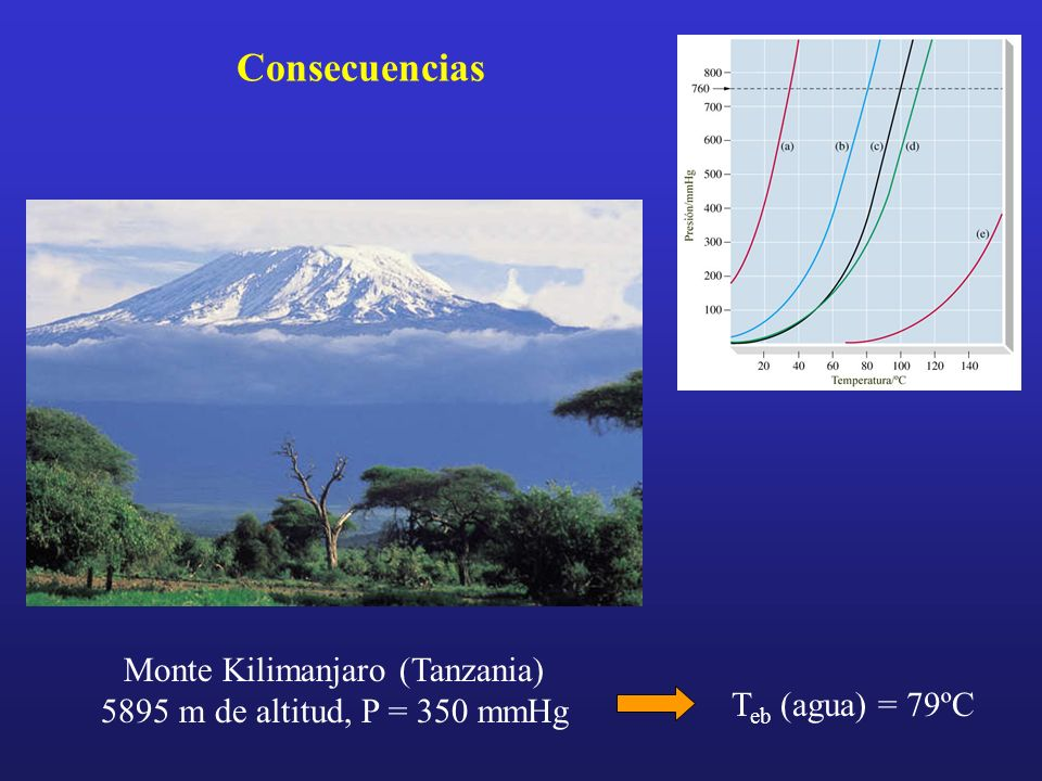 Monte Kilimanjaro (Tanzania) 5895 m de altitud, P = 350 mmHg Consecuencias T eb (agua) = 79ºC