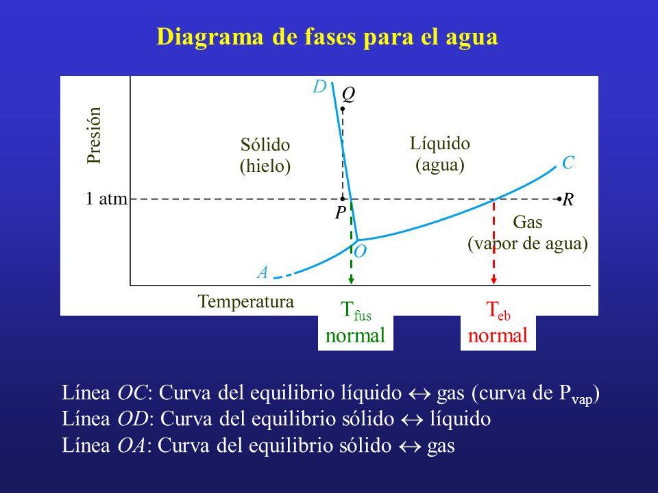 Diagrama de fases para el agua T eb normal T fus normal Línea OC: Curva del equilibrio líquido gas (curva de P vap ) Línea OD: Curva del equilibrio só