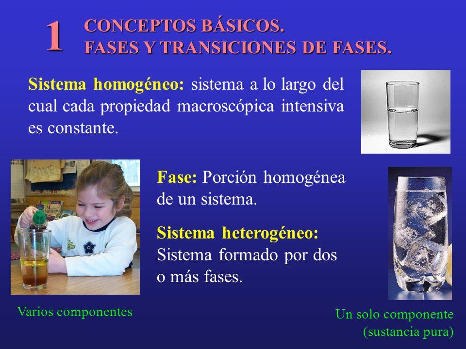 CONCEPTOS BÁSICOS. FASES Y TRANSICIONES DE FASES. 1 Sistema homogéneo: sistema a lo largo del cual cada propiedad macroscópica intensiva es constante.