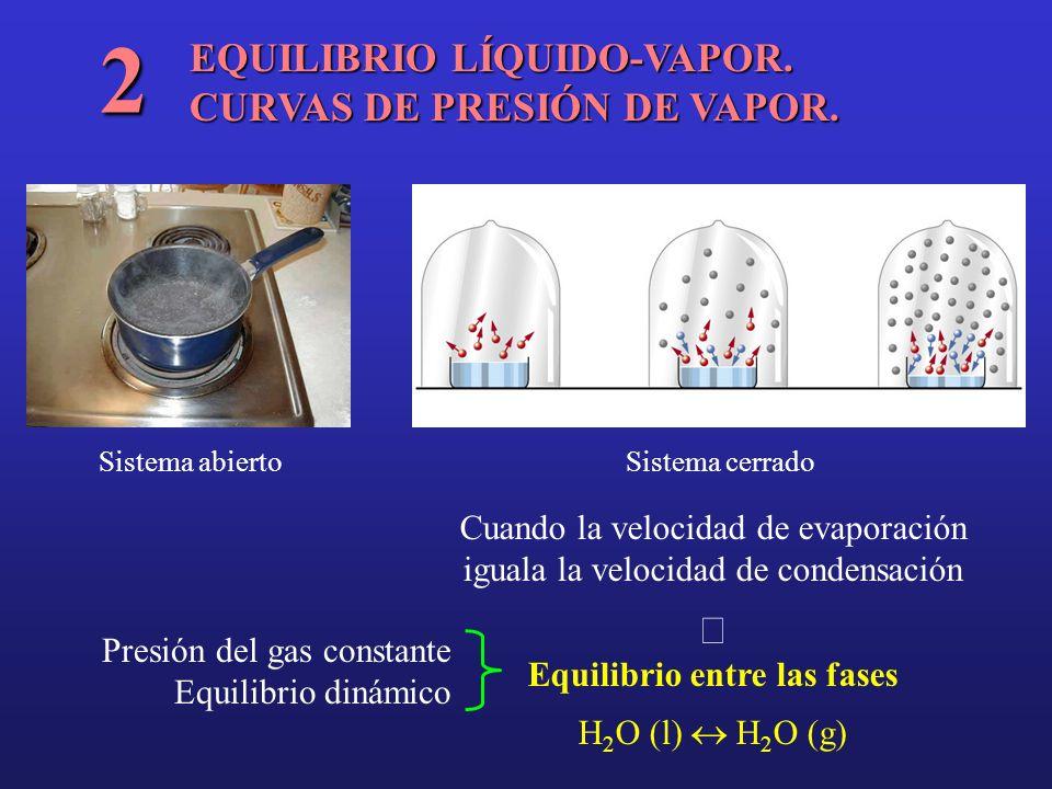 EQUILIBRIO LÍQUIDO-VAPOR. CURVAS DE PRESIÓN DE VAPOR. 2 Sistema abierto Sistema cerrado Cuando la velocidad de evaporación iguala la velocidad de cond
