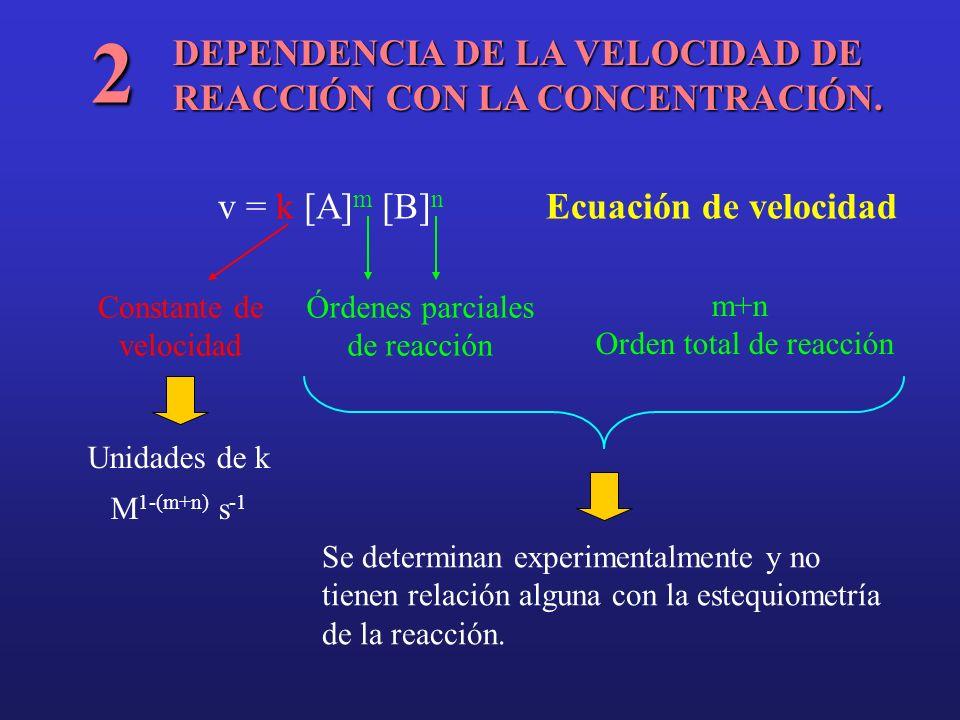 DEPENDENCIA DE LA VELOCIDAD DE REACCIÓN CON LA CONCENTRACIÓN. 2 v = k [A] m [B] n Ecuación de velocidad Constante de velocidad Órdenes parciales de re