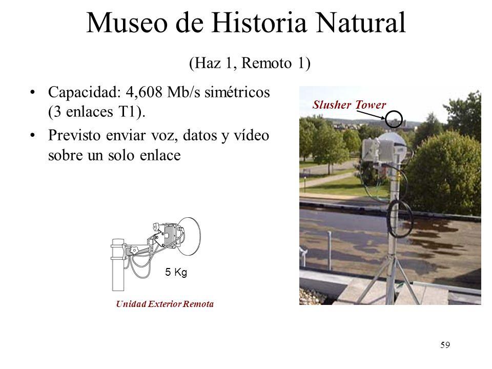 59 Slusher Tower 5 Kg Museo de Historia Natural (Haz 1, Remoto 1) Capacidad: 4,608 Mb/s simétricos (3 enlaces T1). Previsto enviar voz, datos y vídeo