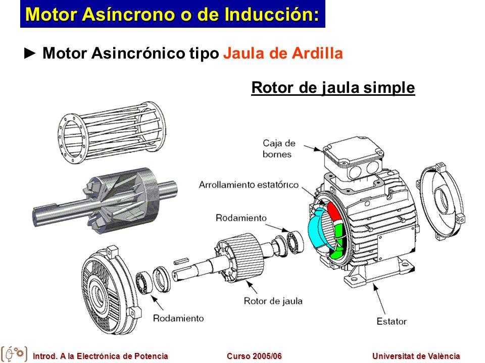 Introd. A la Electrónica de PotenciaCurso 2005/06Universitat de València Motor Asincrónico tipo Jaula de Ardilla Rotor de jaula simple Motor Asíncrono