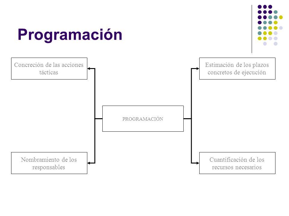 Programación Concreción de las acciones tácticas Estimación de los plazos concretos de ejecución Nombramiento de los responsables Cuantificación de los recursos necesarios PROGRAMACIÓN