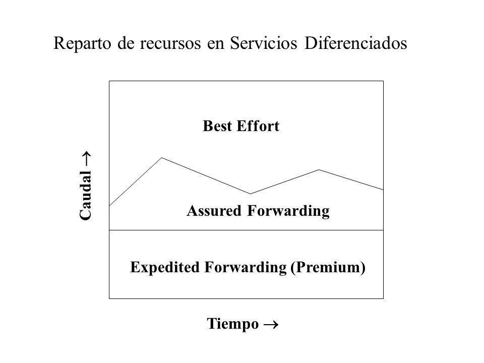 Expedited Forwarding (Premium) Assured Forwarding Best Effort Caudal Reparto de recursos en Servicios Diferenciados Tiempo