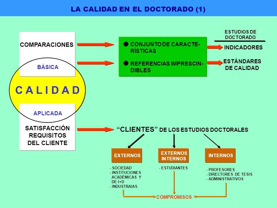 CLIENTES DE LOS ESTUDIOS DOCTORALES EXTERNOS INTERNOS EXTERNOS - SOCIEDAD - INSTITUCIONES ACADÉMICAS Y DE I+D - INDUSTRAIAS - ESTUDIANTES - PROFESORES - DIRECTORES DE TESIS - ADMINISTRATIVOS COMPROMISOS CONJUNTO DE CARACTE- RÍSTICAS REFERENCIAS IMPRESCIN- DIBLES ESTÁNDARES DE CALIDAD INDICADORES ESTUDIOS DE DOCTORADO SATISFACCIÓN REQUISITOS DEL CLIENTE COMPARACIONES C A L I D A D APLICADA BÁSICA LA CALIDAD EN EL DOCTORADO (1)