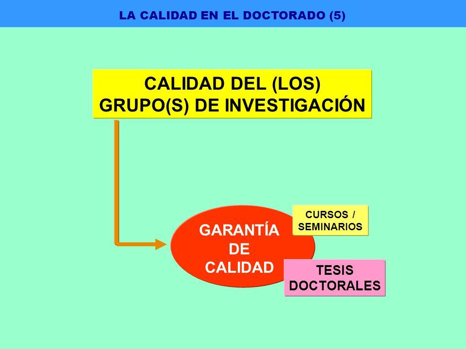CALIDAD DEL (LOS) GRUPO(S) DE INVESTIGACIÓN GARANTÍA DE CALIDAD CURSOS / SEMINARIOS TESIS DOCTORALES LA CALIDAD EN EL DOCTORADO (5)